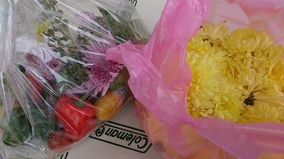 にんにくやピーマンなどのほか、菊の花も☆