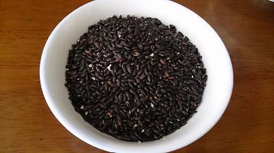 こちらが紫黒米