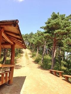 この先に、松茸狩りのエリアが(^_^)