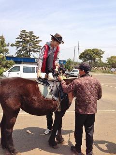 済州馬、かわいいですよね~