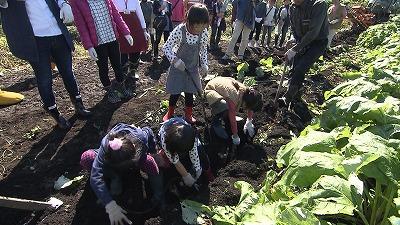 子どもたちも一生懸命ごぼう掘りをしました♪
