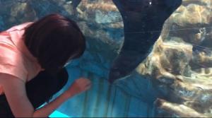 浅虫水族館④