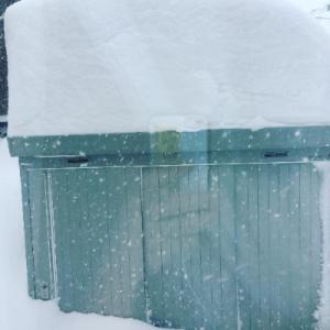 自宅物置に積もった雪・・・